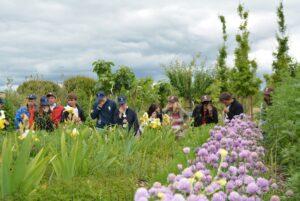 Arboretum de Lunel