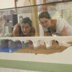 2 visiteuses au musée d'ambrussum